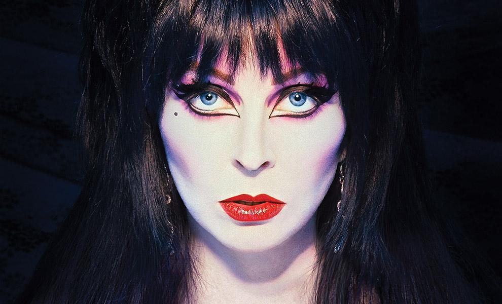 Elvira Mistress of the Dark Elvira Book