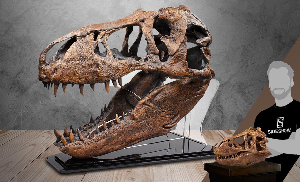 T-Rex Skull Smithsonian Replica