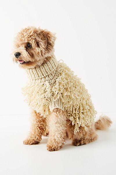 "Max Bone Dog Sweater ""Curly Knit"""
