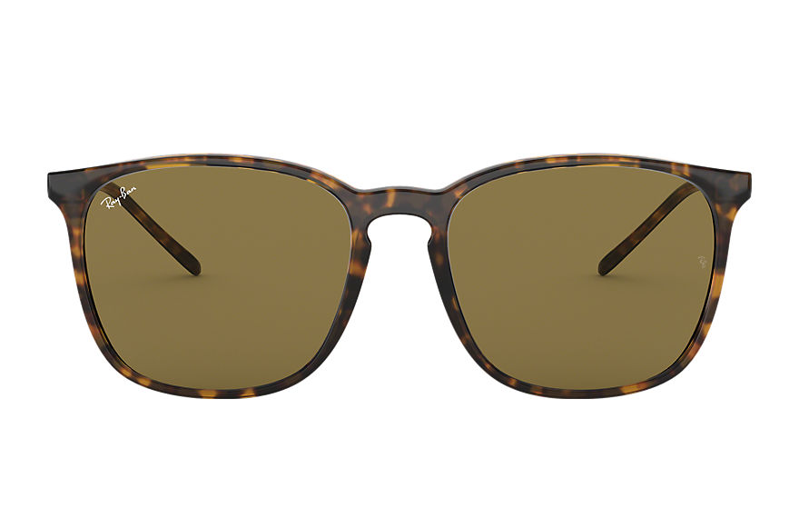 Ray-Ban Rb4387 Tortoise, Brown Lenses - RB4387