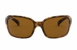 Ray-Ban Rb4068 Tortoise, Polarized Brown Lenses - RB4068
