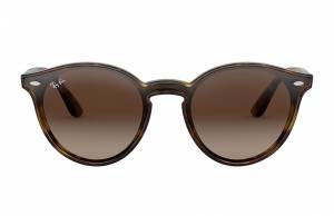 Ray-Ban Blaze Rb4380n Tortoise, Brown Lenses - RB4380N