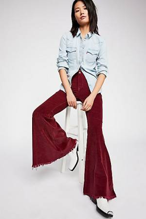 """Free People Cord Flare Jeans """"Just Float On"""""""