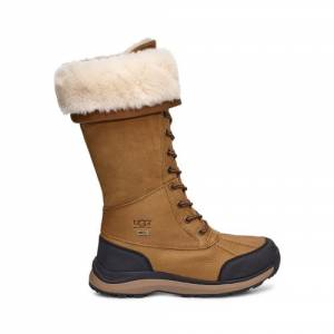 UGG Women's Adirondack III Tall Boot Leather