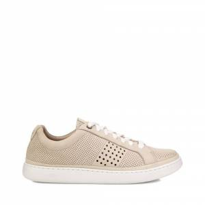 UGG Men's Cali Sneaker Low Perf Leather