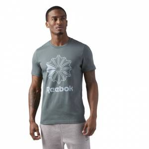 Reebok Classics Big Logo Tee Men's Casual T-Shirt in Chalk Green
