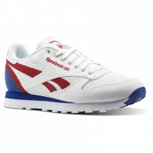 Reebok Classic Leather MVS Men's Retro Running Shoes in White / Excellent Red / Team Dark Royal