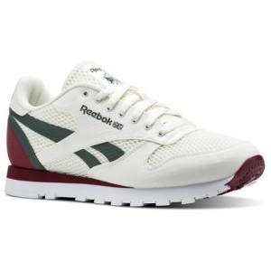 Reebok Classic Leather MVS Men's Retro Running Shoes in Chalk / Urban Maroon / Chalk Green