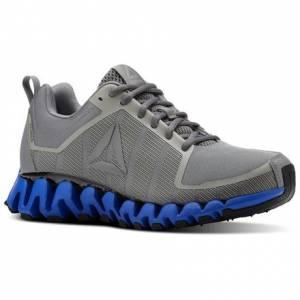 Reebok ZigWild TR 5.0 Men's Running Shoes in Grey / Blue