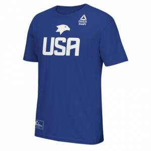 Reebok Team USA Invitational Practice Tee Men's Training T-Shirt in Royal Blue