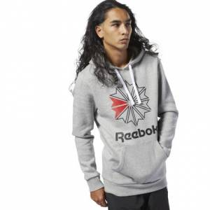 Reebok Classics Big Logo Men's Casual, Lifestyle Hoodie in Grey