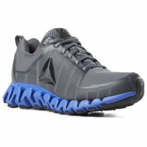Reebok ZigWild TR 5.0 Men's Running Shoes in Alloy / Blue