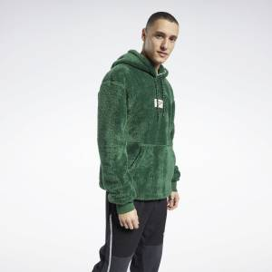 Reebok Classics Men's Winter Escape Hoodie in Green