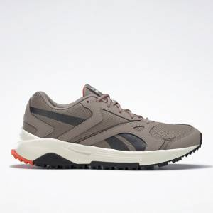 Reebok Lavante Men's Terrain Running Shoes in Grey
